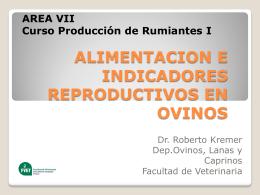 Alimentación y reproducción ovina