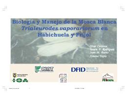 Biología y Manejo de la Mosca Blanca Trialeurodes