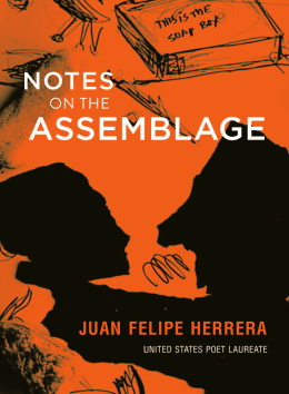 assemblage - City Lights Books