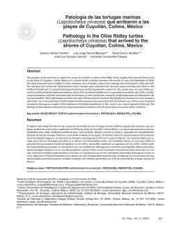 Patología de las tortugas marinas