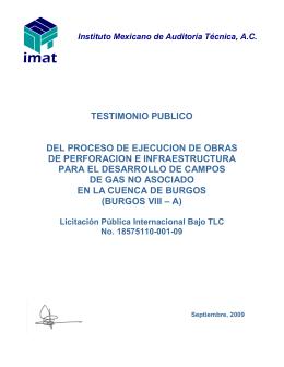 Testimonio Público Burgos VIII - PEMEX Exploración y Producción