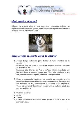 manual para adoptantes perros nordicos