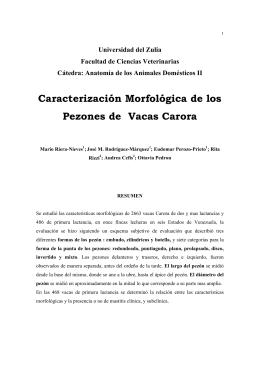 Caracterización Morfológica de los Pezones de Vacas Carora