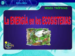 """Energía en un ecosistema - ies """"poeta claudio rodríguez"""""""