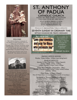 seventh sunday in ordinary time - St. Anthony of Padua Catholic