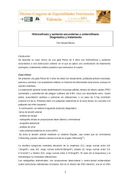 1 Hidronefrosis y azotemia secundarias a ureterolitiasis