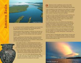 Versión de impresión - Cuenca Amazónica