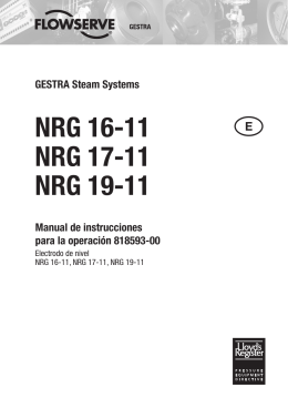 Electrodo de nivel NRG 16-11, NRG 17-11, NRG 19-11