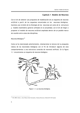 Capítulo 1 Modelo de Neurona