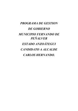 PROGRAMA DE GESTION DE GOBIERNO MUNICIPIO FERNANDO