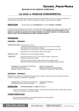 PDF Curso de montaje de moscas