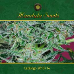 25,00 - Mandala Seeds