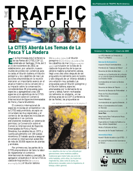 The TRAFFIC Report (Spanish) - Vol. 2, No. 1. 2003.
