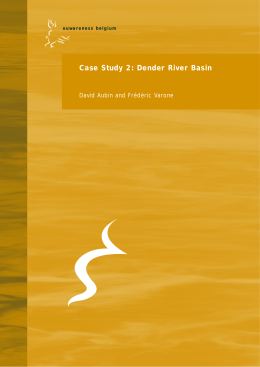 Case Study 2: Dender River Basin