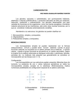 CARBOHIDRATOS Los glúcidos, azúcares o - FMVZ-UNAM