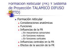 Formación Reticular (FR) Y Sistema de Proyección TALAMICO