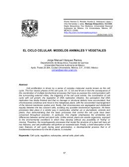 Bases Bioquímicas y Fisiopatológicas de las Enfermedades