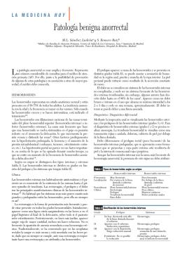 LA MED patologia benigna 27.qxd