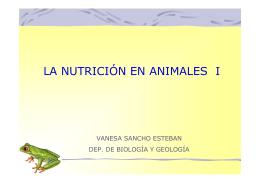 LA NUTRICIÓN EN ANIMALES I
