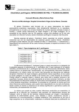 Clostridium perfringens: INFECCIONES DE PIEL Y TEJIDOS