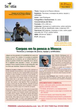 Carpas en la pesca a Mosca