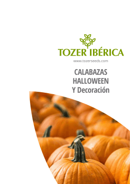 CALABAZAS HALLOWEEN Y Decoración