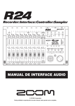 MANUAL DE INTERFACE AUDIO