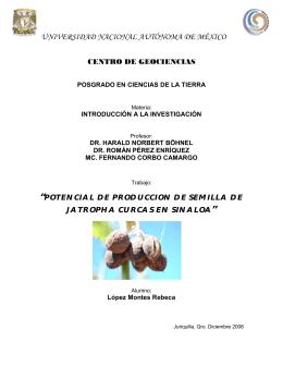 Jatropha Curcas - Centro de Geociencias ::.. UNAM