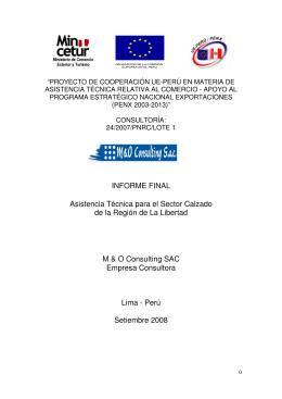 INFORME FINAL Asistencia Técnica para el Sector Calzado de la