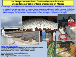 principales hongos comestibles y medicinales cultivados