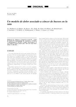 Un modelo de dolor asociado a cáncer de huesos en la r a t a