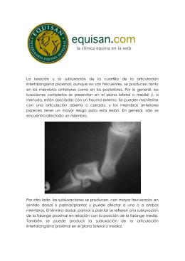 La luxación y la subluxación de la cuartilla de la articulación