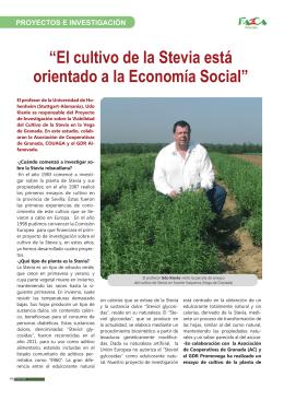 """""""El cultivo de la Stevia está orientado a la Economía Social"""""""