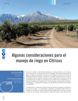 Algunas consideraciones para el manejo de riego en Cítricos