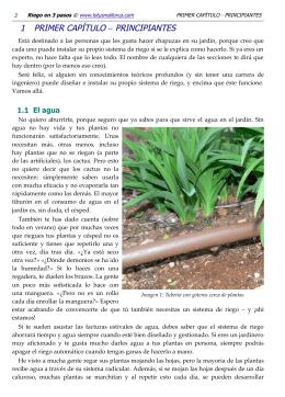 demo de libro - Lotus Mallorca