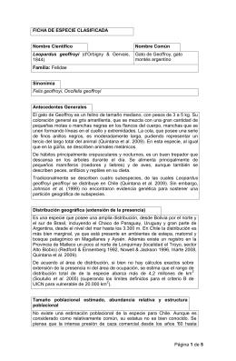 Página 1 de 5 FICHA DE ESPECIE CLASIFICADA Nombre