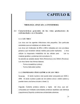 CAPITULO II.
