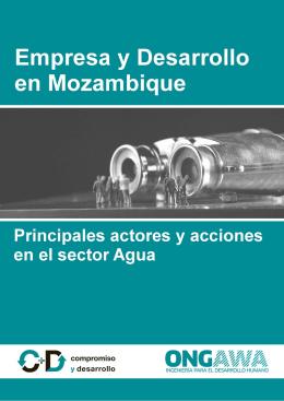 Empresa y Desarrollo en Mozambique: principales actores y acciones