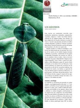los MÁNtidos - Biodiversidad Mexicana