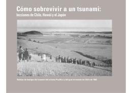 Cómo Sobrevivir a un tsunami: lecciones de Chile, Hawái y el Japón