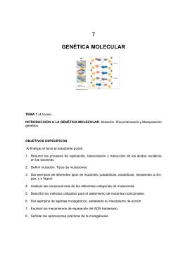 Tema 7: Genética molecular.