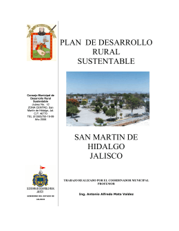 plan de desarrollo rural sustentable san m artin