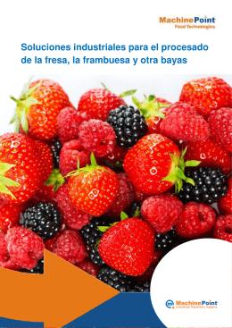 Soluciones industriales para el procesado de la fresa, la frambuesa