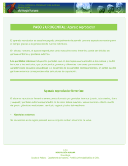 Paso 2: Aparato genital. (Archivo PDF)