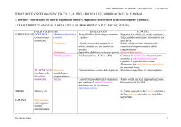 tema 5: modelos de organización celular: procariótica y eucariótica