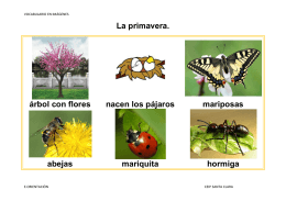 La primavera. árbol con flores nacen los pájaros mariposas abejas