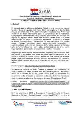 El caracol gigante africano - Sistema Informacion Ambiental