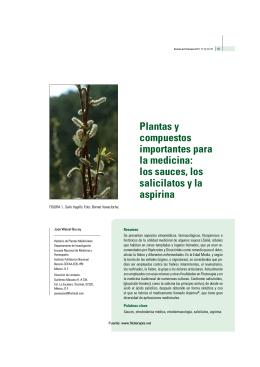 Plantas y compuestos importantes para la medicina