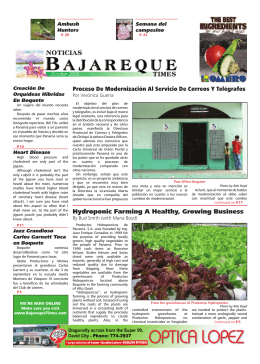 Hydroponic Farming A Healthy, Growing Business