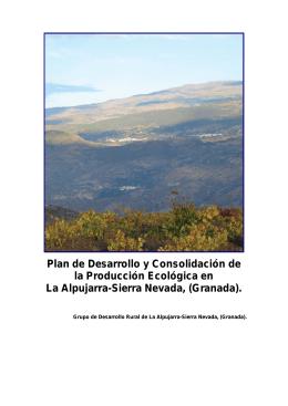 Plan de Desarrollo y Consolidación de la Producción
